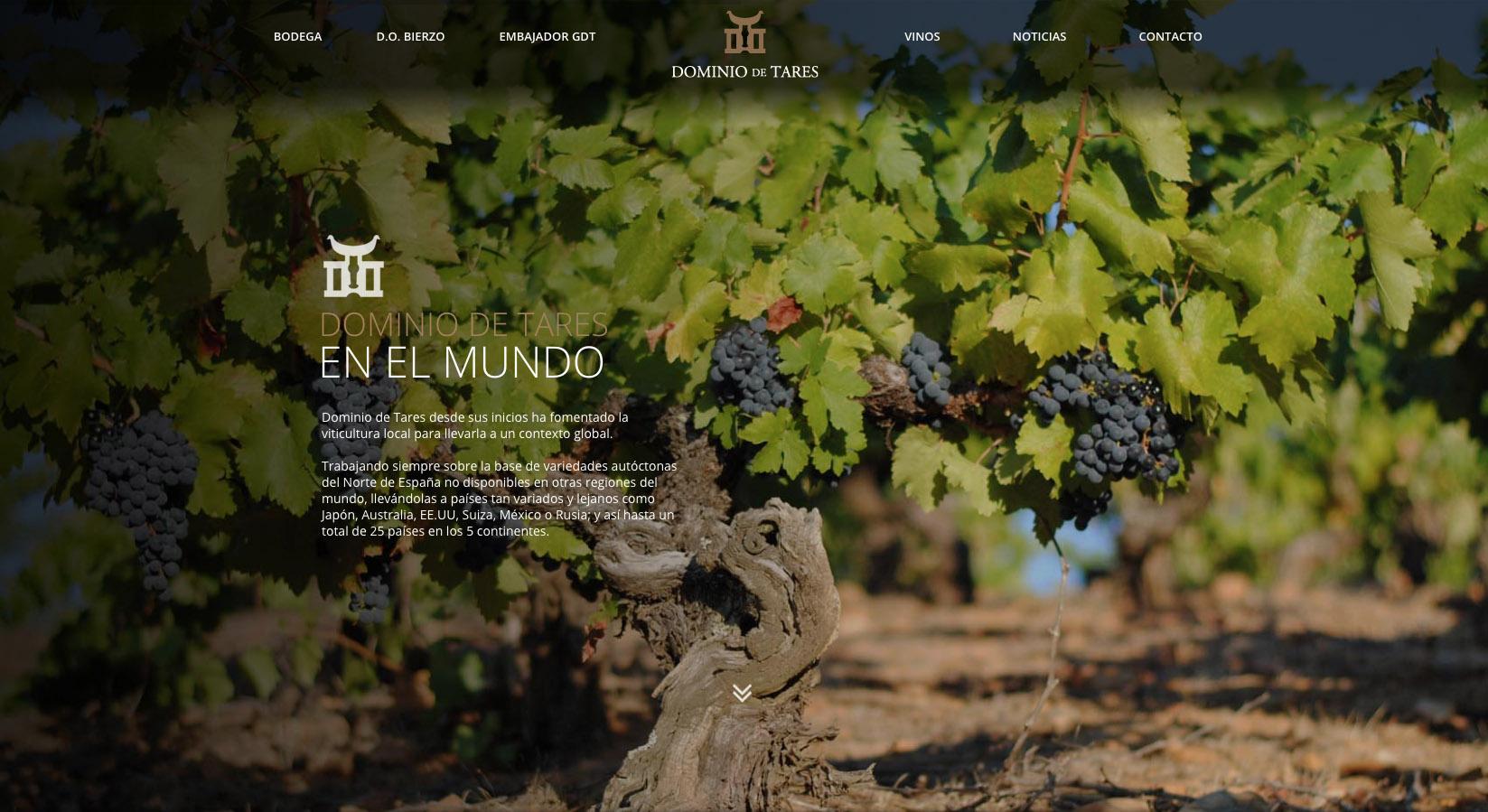 Dominio de Tares, diseño web - Marcos Pichel - Diseñador y ...